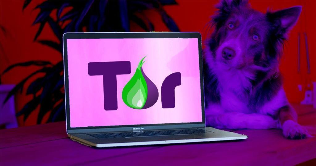 Kas yra TOR?